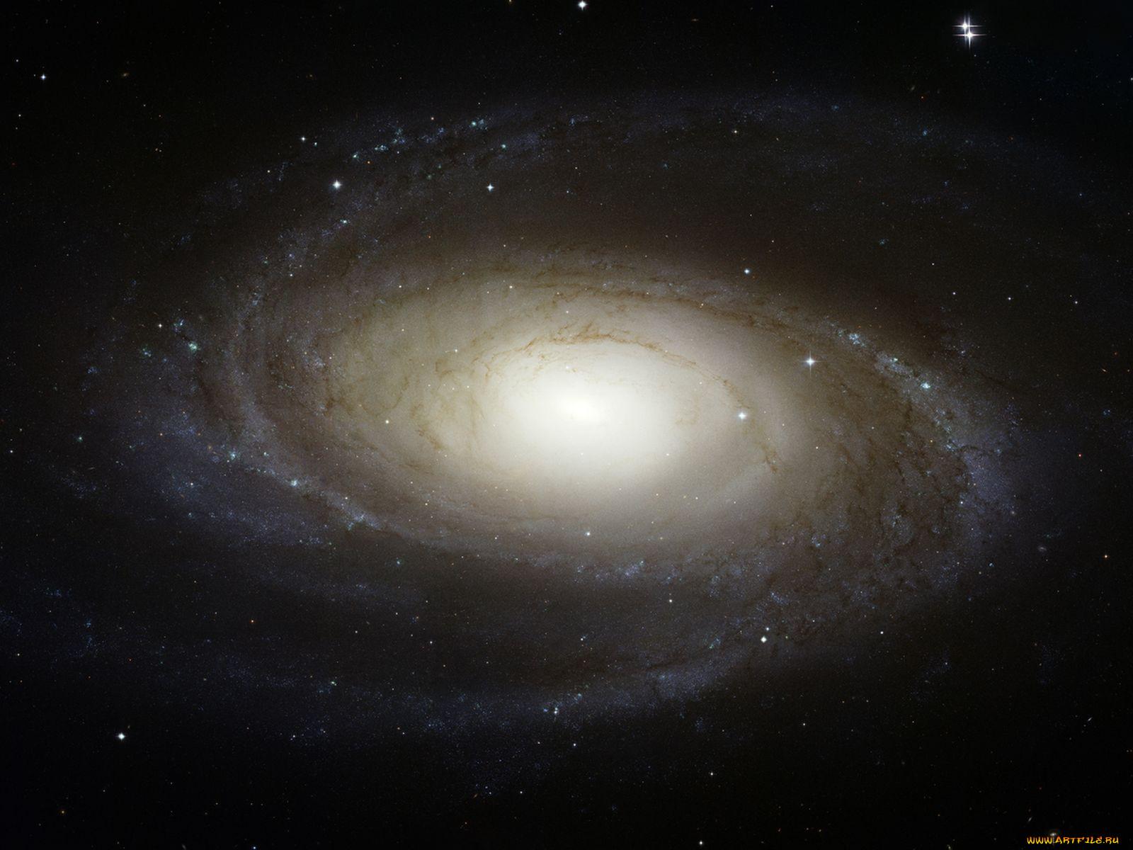 галактика, m81, космос, галактики, туманности